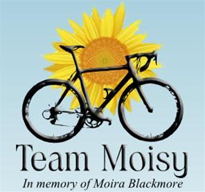 Team Moisy